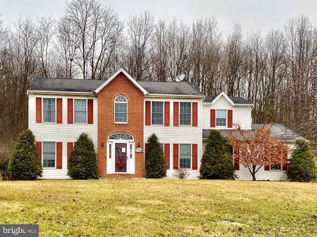 801 Red Dale Road, ORWIGSBURG, PA 17961 (#PASK128574) :: Ramus Realty Group