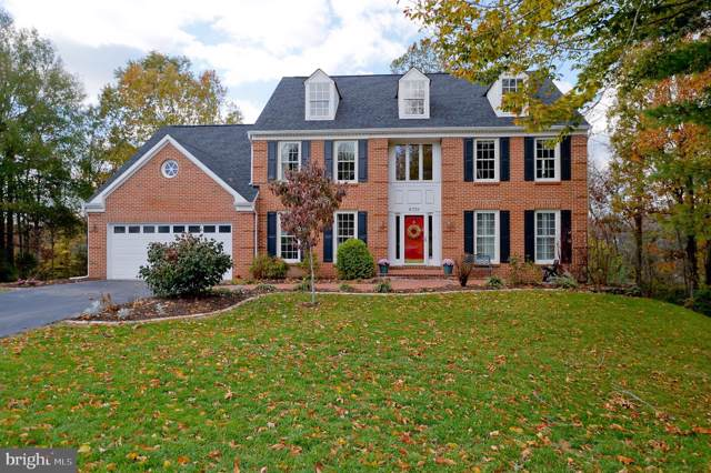 6738 Jade Post Lane, CENTREVILLE, VA 20121 (#VAFX1098844) :: The Putnam Group