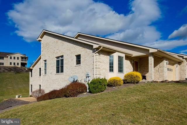 133 Stony Pointe Way, STRASBURG, VA 22657 (#VASH117788) :: Great Falls Great Homes