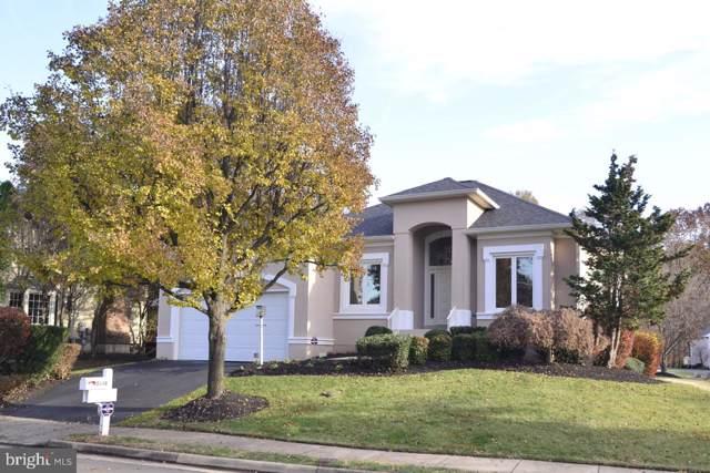 20848 Waterbeach Place, STERLING, VA 20165 (#VALO398810) :: Revol Real Estate