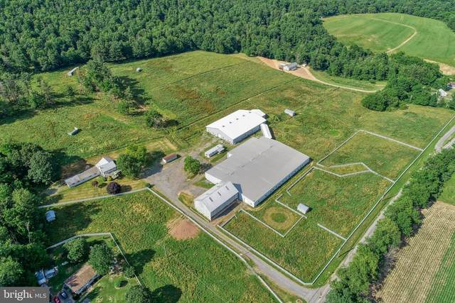 6190 Weikert Road, MILLMONT, PA 17845 (#PAUN100018) :: ExecuHome Realty