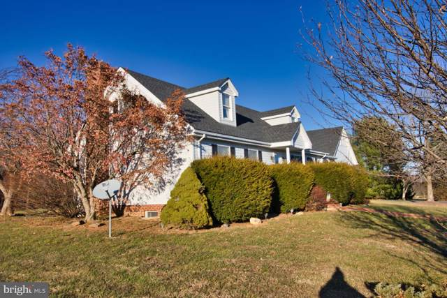 397 Fairview Circle, WOODSTOCK, VA 22664 (#VASH117930) :: Gail Nyman Group