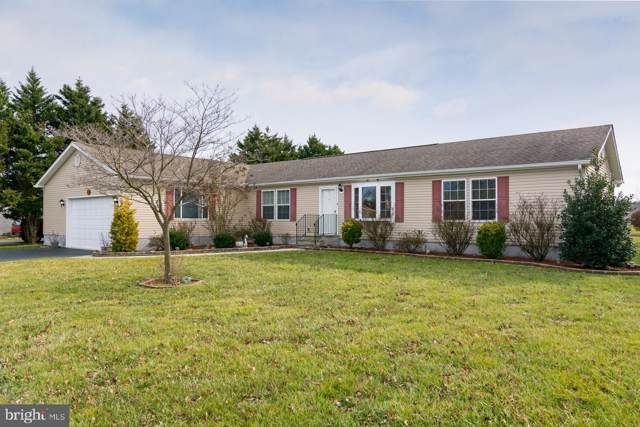 164 Saddlebrook Drive, CAMDEN WYOMING, DE 19934 (#DEKT235018) :: REMAX Horizons
