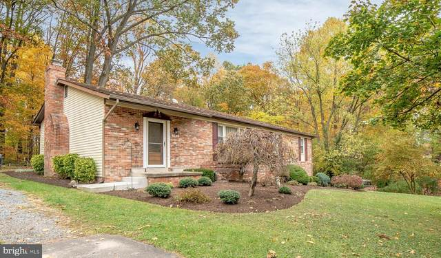 11412 Meadowlark Drive, IJAMSVILLE, MD 21754 (#MDFR258244) :: Pearson Smith Realty