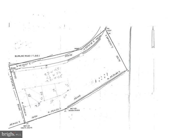 144 Blimline Road, MOHNTON, PA 19540 (#PABK352672) :: Iron Valley Real Estate