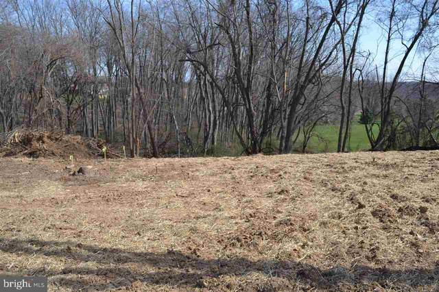 Vacant Land New Park Road, NEW PARK, PA 17352 (#PAYK131746) :: The Jim Powers Team