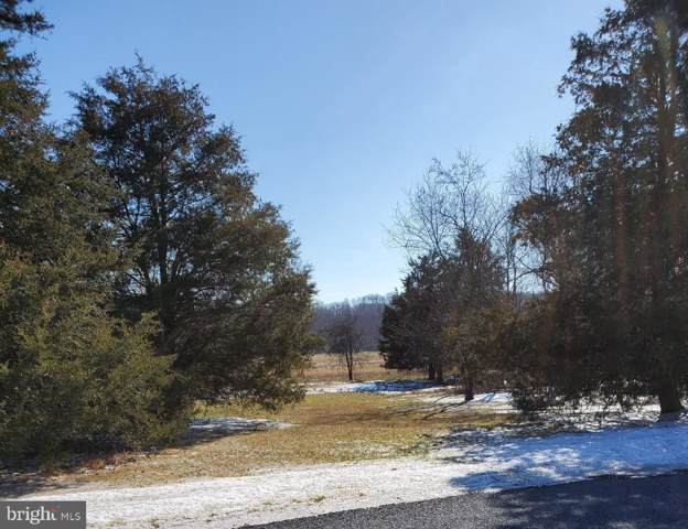 Lot 10 Zeigler Mill Road, GETTYSBURG, PA 17325 (#PAAD110136) :: Liz Hamberger Real Estate Team of KW Keystone Realty