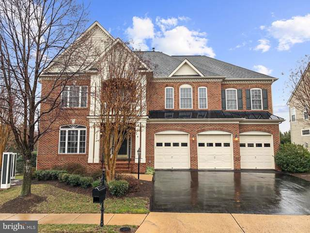 21824 Ainsley Court, BROADLANDS, VA 20148 (#VALO401912) :: AJ Team Realty