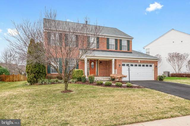20611 Coppersmith Drive, ASHBURN, VA 20147 (#VALO401932) :: LoCoMusings