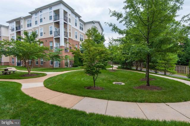 3840 Lightfoot Street #448, CHANTILLY, VA 20151 (#VAFX1107494) :: Viva the Life Properties
