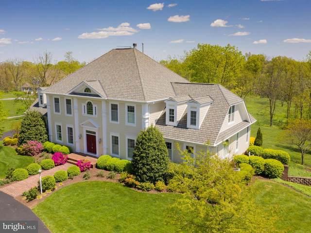 641 Stonymeade Drive, WINCHESTER, VA 22602 (#VAFV155384) :: Debbie Dogrul Associates - Long and Foster Real Estate