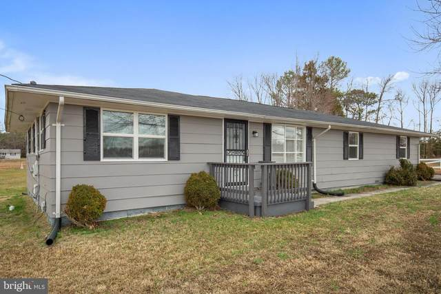 20883 Willows Road, LEXINGTON PARK, MD 20653 (#MDSM167308) :: Scott Kompa Group
