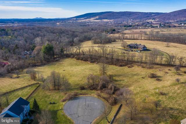 Apple Pride Court, ROUND HILL, VA 20141 (#VALO402644) :: Peter Knapp Realty Group