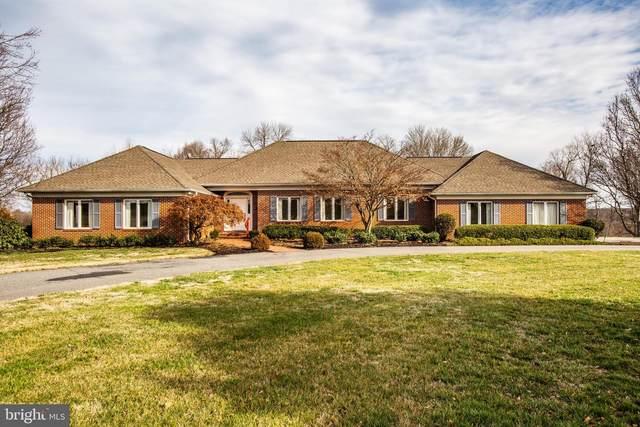 11315 North Club Drive, FREDERICKSBURG, VA 22408 (#VASP219256) :: Debbie Dogrul Associates - Long and Foster Real Estate