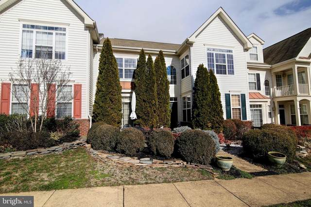 44266 Shehawken Terrace, ASHBURN, VA 20147 (#VALO402958) :: Revol Real Estate