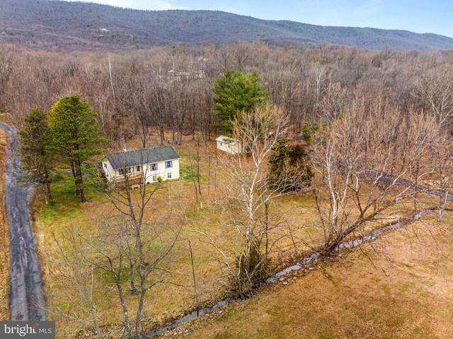 172 Witch Hazel Trail, WINCHESTER, VA 22602 (#VAFV155590) :: The Licata Group/Keller Williams Realty