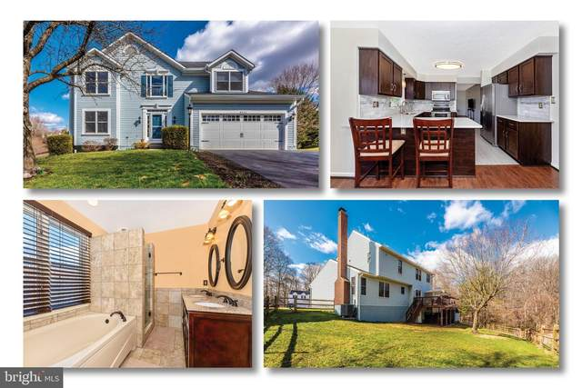 6024 Douglas Avenue, NEW MARKET, MD 21774 (#MDFR259544) :: Advon Group
