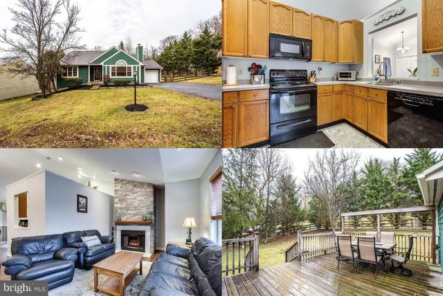 10798 Forest Edge Place, NEW MARKET, MD 21774 (#MDFR259682) :: Viva the Life Properties