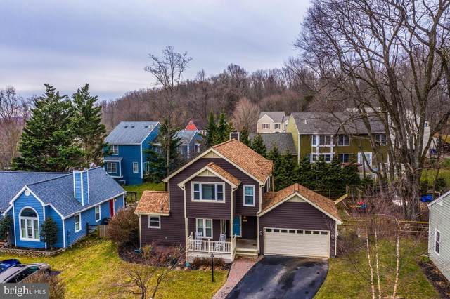 10095 Heron Court, NEW MARKET, MD 21774 (#MDFR259684) :: Charis Realty Group