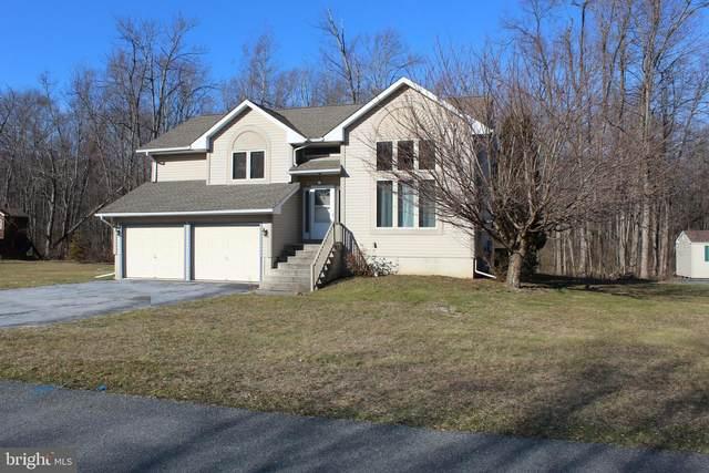 10 Morari Drive, DILLSBURG, PA 17019 (#PAYK133232) :: The Joy Daniels Real Estate Group