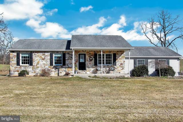 675 Montour Road, LANDISBURG, PA 17040 (#PAPY101844) :: The Joy Daniels Real Estate Group