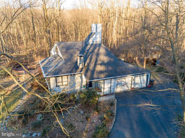 212 Haag Road, READING, PA 19606 (#PABK354346) :: Iron Valley Real Estate