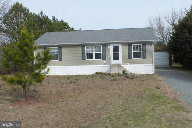 11467 Abbys Way, BRIDGEVILLE, DE 19933 (#DESU156570) :: CoastLine Realty