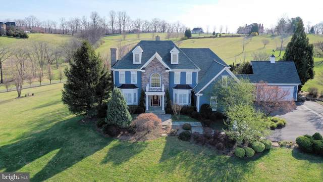 16080 Gold Cup Lane, PAEONIAN SPRINGS, VA 20129 (#VALO404088) :: The Greg Wells Team