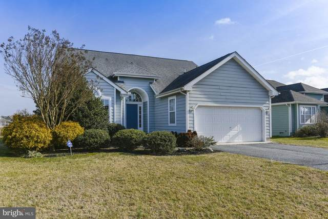 298 Lakeside Drive, LEWES, DE 19958 (#DESU156614) :: Linda Dale Real Estate Experts