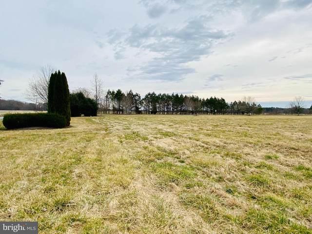 28382 Blue Heron Lane, EASTON, MD 21601 (#MDTA137480) :: The Riffle Group of Keller Williams Select Realtors