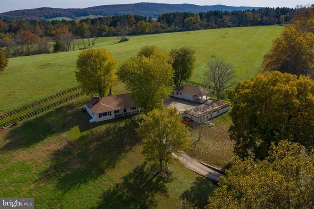 23572 Champe Ford Road, MIDDLEBURG, VA 20117 (#VALO405258) :: EXP Realty