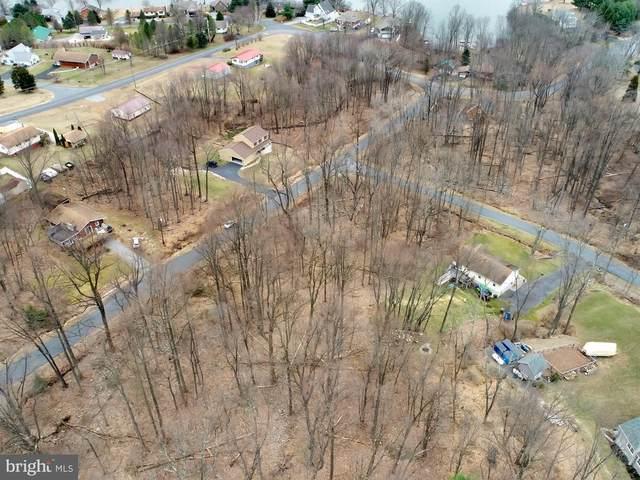 299 Hogan Drive, AUBURN, PA 17922 (#PASK130056) :: REMAX Horizons