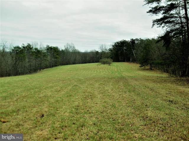 Double Pine Road, FLINTSTONE, MD 21530 (#MDAL133882) :: Charis Realty Group