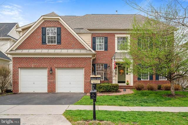 43988 Riverpoint Drive, LEESBURG, VA 20176 (#VALO406574) :: The Greg Wells Team