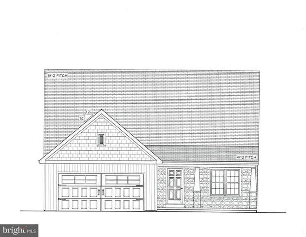 110 James Drive, NEW HOLLAND, PA 17557 (#PALA161348) :: The Joy Daniels Real Estate Group