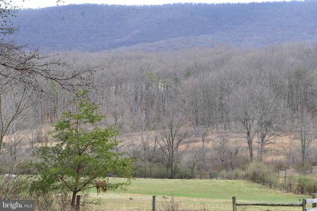 10555 Trout Run Road, WARDENSVILLE, WV 26851 (#WVHD105888) :: AJ Team Realty