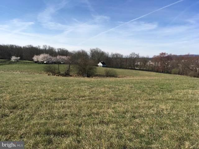 Lakefield Road, ROUND HILL, VA 20141 (#VALO406922) :: EXP Realty