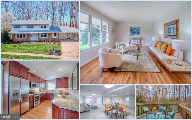 8516 Browning Court, ANNANDALE, VA 22003 (#VAFX1119520) :: A Magnolia Home Team