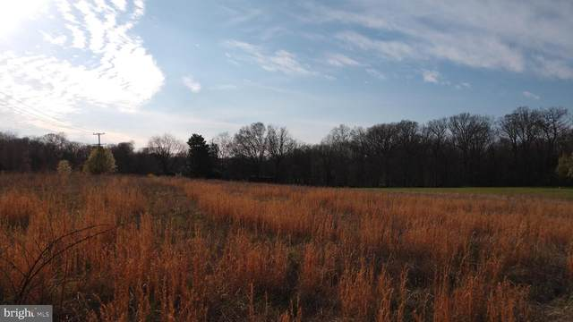 Lot 3 Patuxent River Road, DAVIDSONVILLE, MD 21035 (#MDAA429886) :: The Riffle Group of Keller Williams Select Realtors