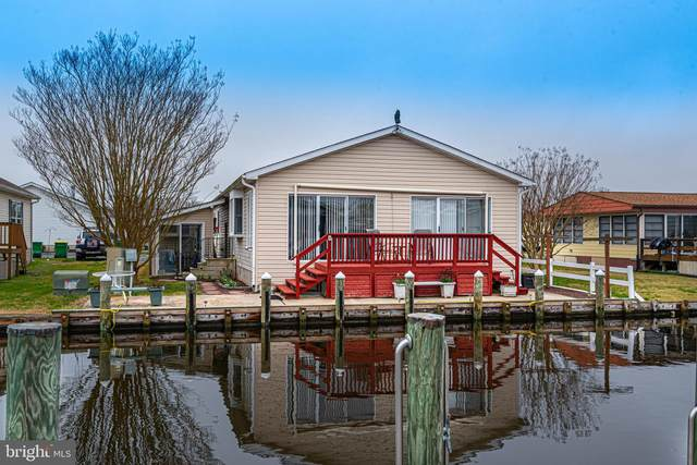 36988 Pintail Drive, SELBYVILLE, DE 19975 (#DESU158832) :: Atlantic Shores Sotheby's International Realty