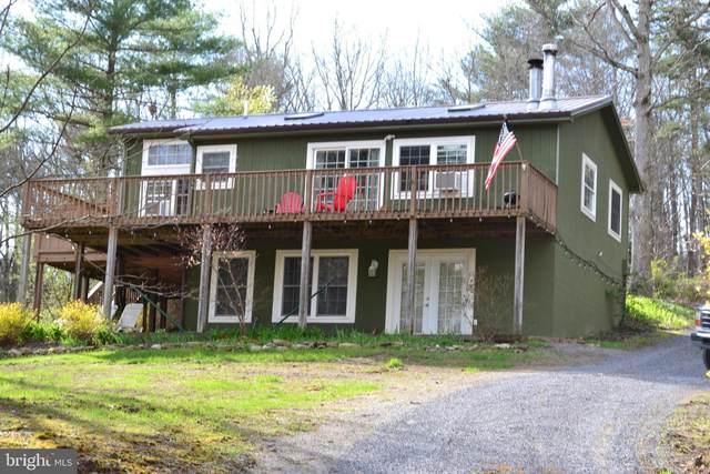 55 Hunter Lane, MATHIAS, WV 26812 (#WVHD105914) :: Dart Homes