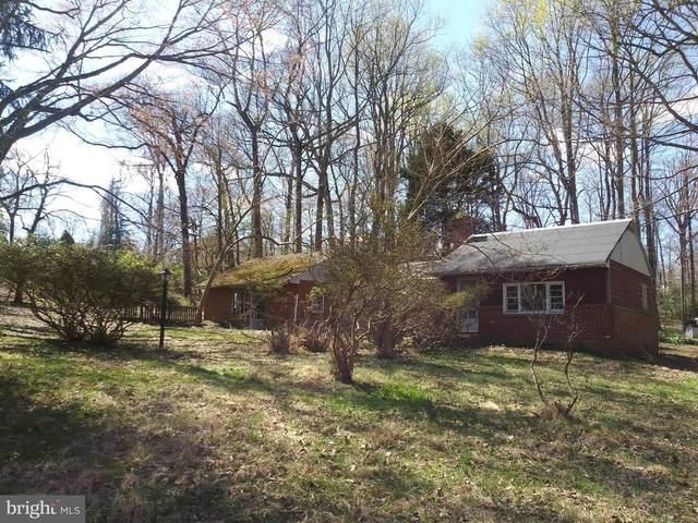 11616 Pine Tree Drive, FAIRFAX, VA 22033 (#VAFX1121202) :: Ram Bala Associates | Keller Williams Realty