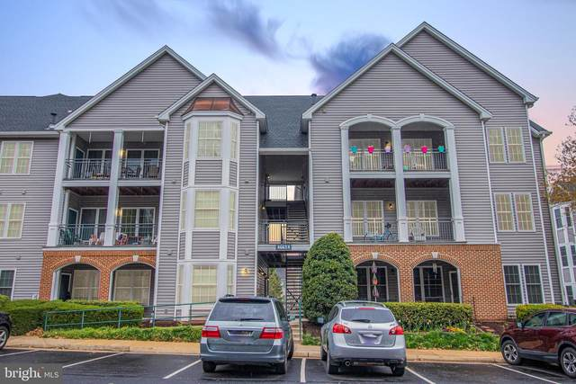 46614 Drysdale Terrace #201, STERLING, VA 20165 (#VALO407776) :: Peter Knapp Realty Group