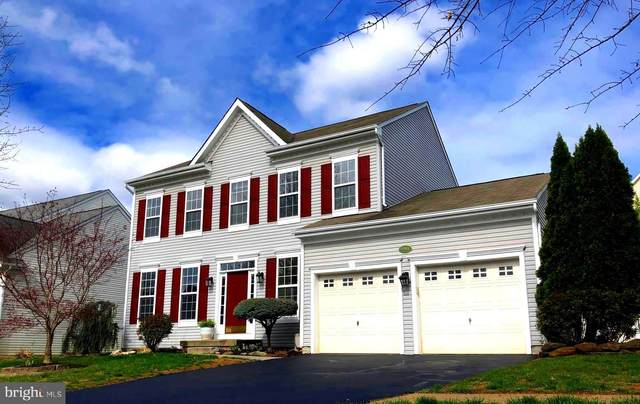 17553 Tedler Circle, ROUND HILL, VA 20141 (#VALO407798) :: The Greg Wells Team