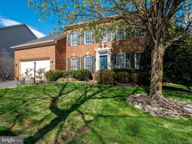 43707 Mink Meadows Street, CHANTILLY, VA 20152 (#VALO407866) :: The Greg Wells Team