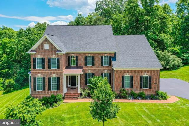 39219 Madison Manor Court, HAMILTON, VA 20158 (#VALO408004) :: LoCoMusings