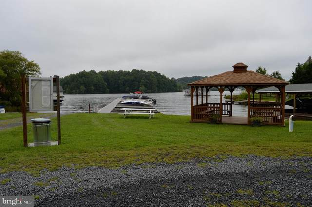 Seclusion Shores Drive, MINERAL, VA 23117 (#VALA120988) :: CR of Maryland