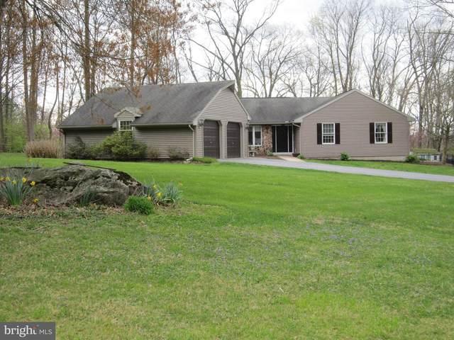 10 Pebble Lane, DENVER, PA 17517 (#PALA161916) :: The Joy Daniels Real Estate Group