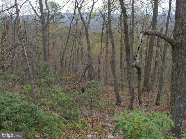 Tomahawk Trail Lot 71, WINCHESTER, VA 22602 (#VAFV156984) :: The Matt Lenza Real Estate Team