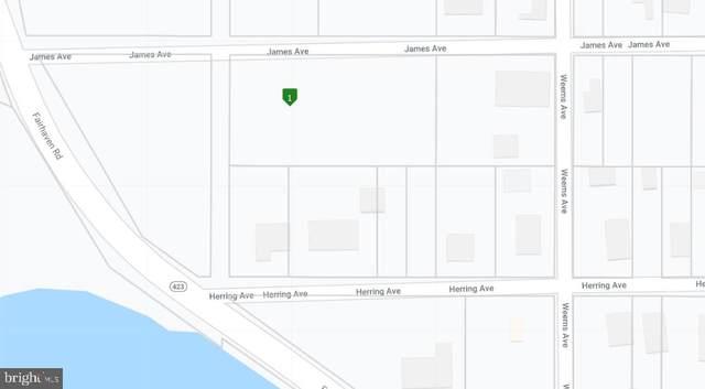 515 James Avenue, TRACYS LANDING, MD 20779 (#MDAA431996) :: Gail Nyman Group